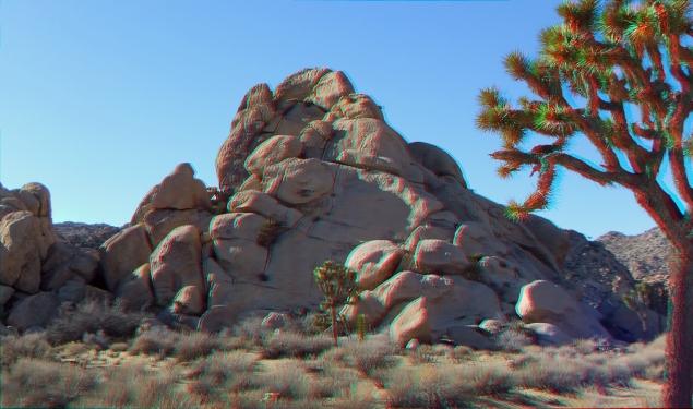 Mount Grossvogel Joshua Tree 3DA 1080p DSCF7453