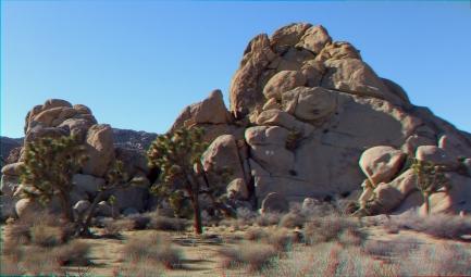 Mount Grossvogel Joshua Tree 3DA 1080p DSCF7459