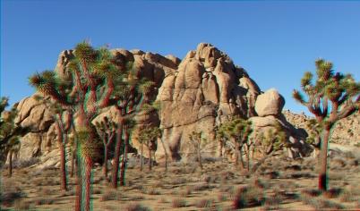 Mount Grossvogel Joshua Tree 3DA 1080p DSCF7554