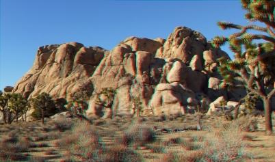 Mount Grossvogel Joshua Tree 3DA 1080p DSCF7557
