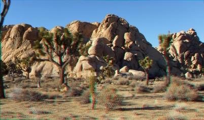 Mount Grossvogel Joshua Tree 3DA 1080p DSCF7561