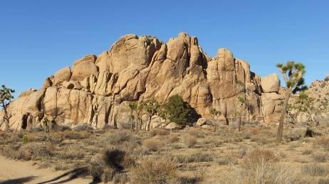 Mount Grossvogel Joshua Tree DSCF7552