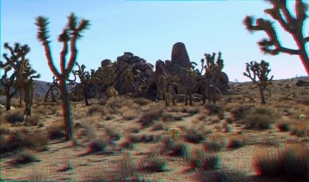 Poetry Rock 3DA 1080p DSCF7482