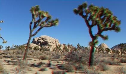 Turtle Rock 3DA 1080p DSCF7311