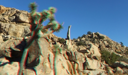 Aiguille de Joshua Tree 3DA 1080p DSCF6595
