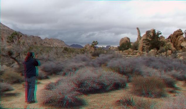 Aiguille de Joshua Tree 3DA 1080p DSCF7632