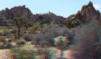 Glory Dome 3DA 1080p DSCF2884