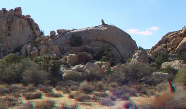 Glory Dome 3DA 1080p DSCF2895