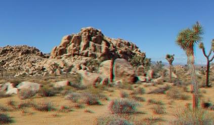 Jellystone 3DA 1080p DSCF1329