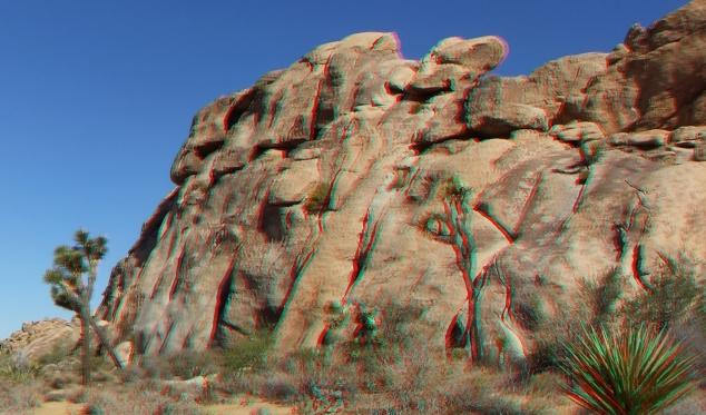 Jellystone 3DA 1080p DSCF1358