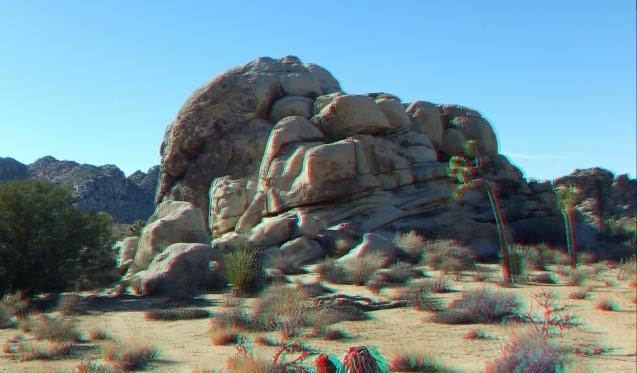 Lizards Hangout 3DA 1080p DSCF6444