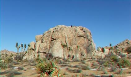 Lizards Hangout 3DA 1080p DSCF6781