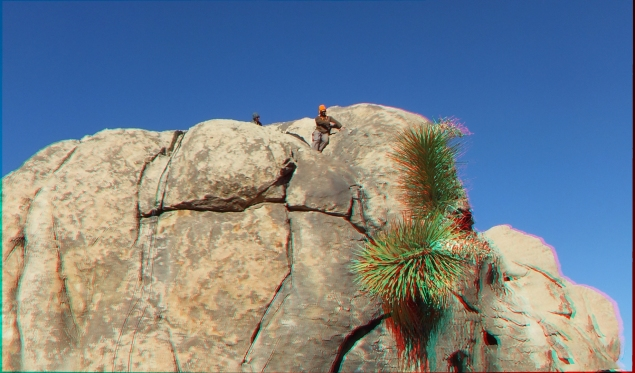 Lizards Hangout 3DA 1080p DSCF6783