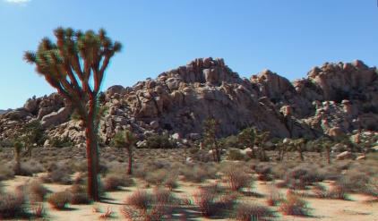Playhouse Rock 3DA 1080p DSCF2785