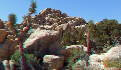 super-creeps-area-joshua-tree-np-3da-1080p-dscf4389