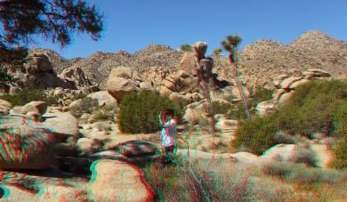 super-creeps-area-joshua-tree-np-3da-1080p-dscf4392