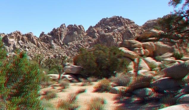 super-creeps-area-joshua-tree-np-3da-1080p-dscf4395