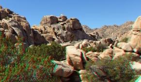 super-creeps-area-joshua-tree-np-3da-1080p-dscf4401