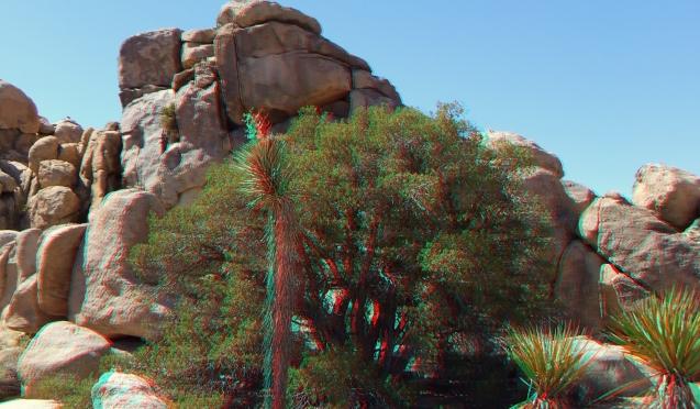 super-creeps-area-joshua-tree-np-3da-1080p-dscf4416