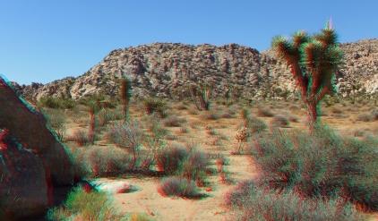 super-creeps-area-joshua-tree-np-3da-1080p-dscf4420