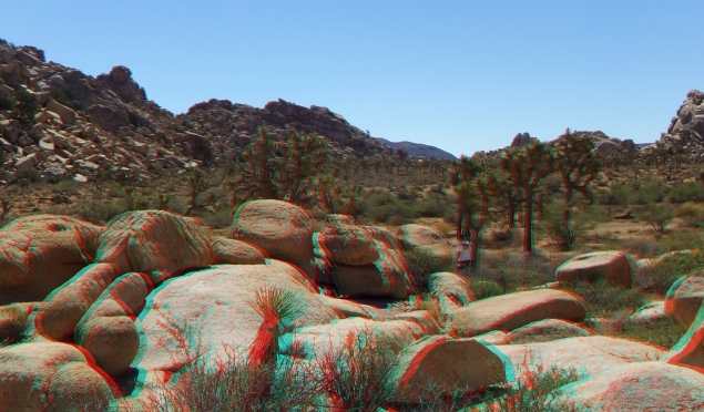 super-creeps-area-joshua-tree-np-3da-1080p-dscf4440
