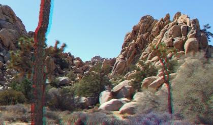 The Cathouse 3DA 1080p DSCF2499