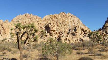 Lost Horse Wall DSCF6507