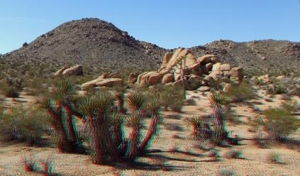 Munchkinland Joshua Tree NP 3DA 1080p DSCF3230