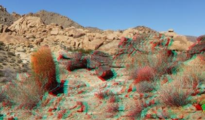 Munchkinland Joshua Tree NP 3DA 1080p DSCF3307