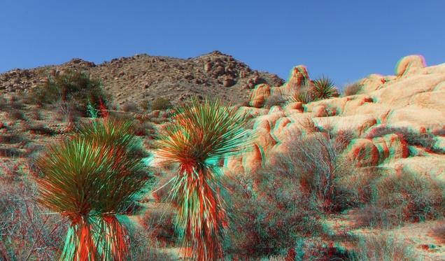 Munchkinland Joshua Tree NP 3DA 1080p DSCF3314