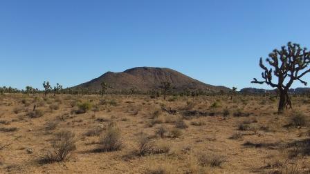 Negro Hill Queen Valley DSCF7690