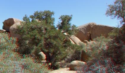 Pine City 3DA 1080p DSCF3818