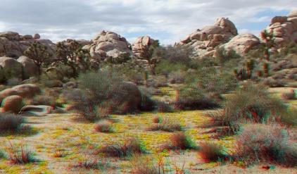 Queen Valley 3DA 1080p DSCF6515