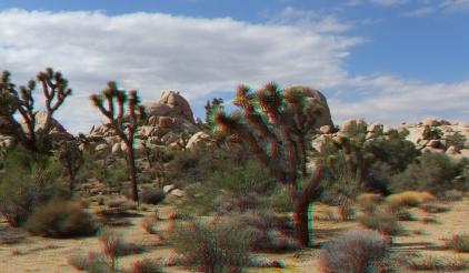Queen Valley 3DA 1080p DSCF6518