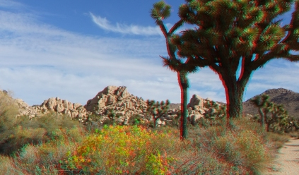 Queen Valley 3DA 1080p DSCF6593