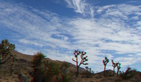 Queen Valley 3DA 1080p DSCF6606