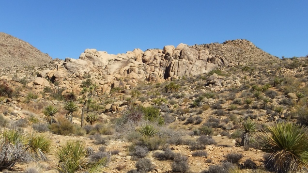 Queen Valley White Cliffs DSCF8020