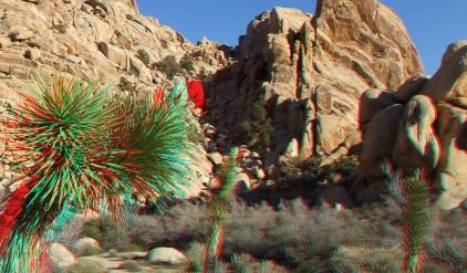 Rock Garden Valley 3DA 1080p DSCF3480