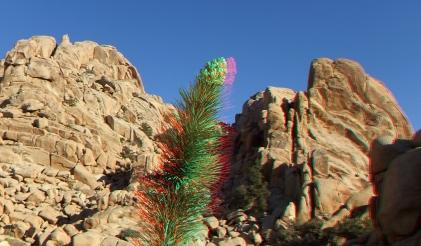 Rock Garden Valley 3DA 1080p DSCF3481