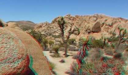 Face Rock Joshua Tree NP 3DA 1080p DSCF0643