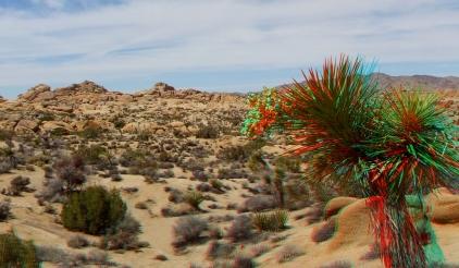Jumbo Rocks 3DA 1080p DSCF3088
