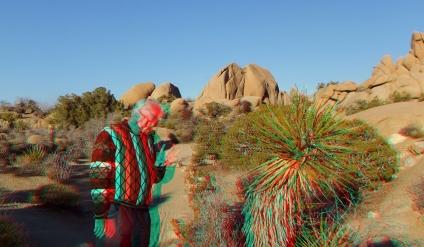 Jumbo Rocks Campground 3DA 1080p DSCF1240