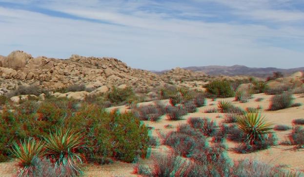 Jumbo Rocks Campground 3DA 1080p DSCF3067