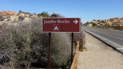 Jumbo Rocks Campground DSCF0748