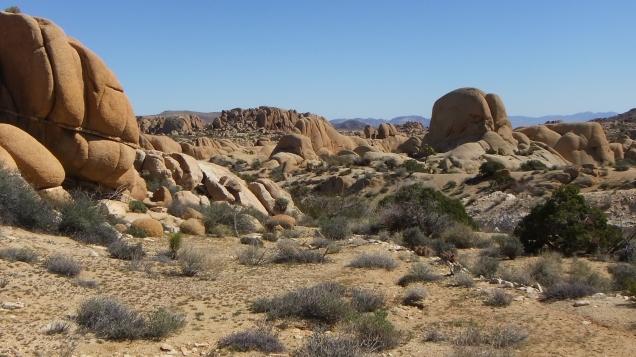 Jumbo Rocks Conans Corridor trail DSCF0768