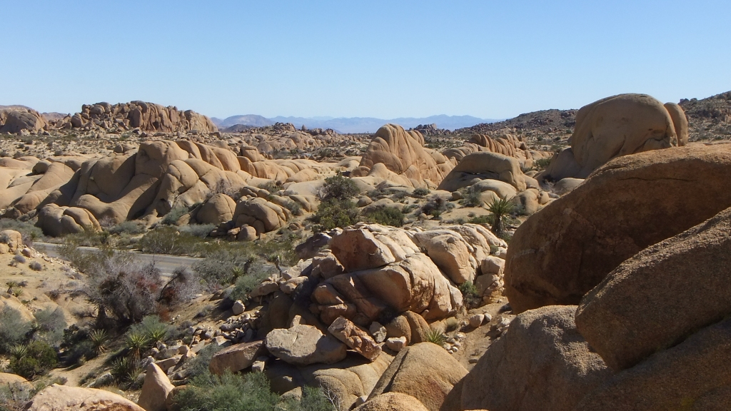 Jumbo Rocks Conans Corridor trail DSCF0775