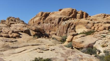 Jumbo Rocks Conans Corridor trail DSCF0795