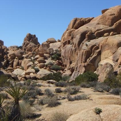 Jumbo Rocks Conans Corridor trail DSCF0799