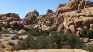 Jumbo Rocks Conans Corridor trail DSCF0809