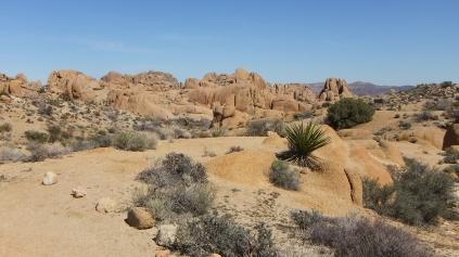 Jumbo Rocks Conans Corridor trail DSCF0812